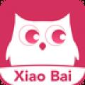 小白网app官方版